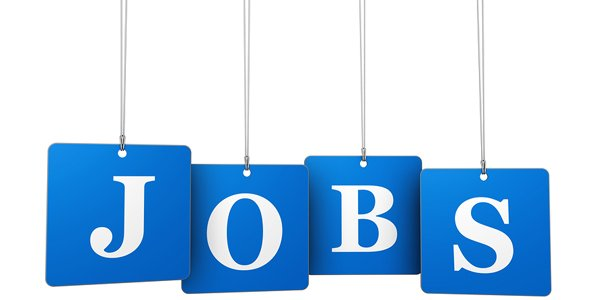 5 Emerging Insurance Jobs
