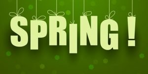 Spring Into Insurance Marketing