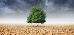 How Climate Change Will Impact Your Agency in 2021
